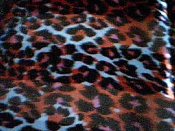 Bown, Pink and Orange Cheetah Scarf