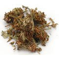 1 lb. of wildcrafted Whole Red Clover Blossoms