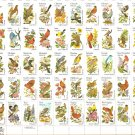 50 State Birds And Flowers 20 Cents Full Plate
