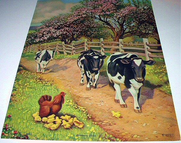 Docile Black/White Farm COWS-BLOSSOM TIME Lithograph