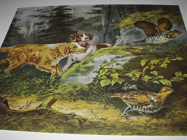 Hunting Dogs,Pheasants in Woods-FLUSHED-Etchotone Print by Currier & Ives