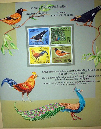 RARE SET-TYPICAL BIRDS OF CEYLON-SHEET OF 4 IMPERFORATED STAMPS COLORFUL-MINT!!!PEACOCK,ORIOLE