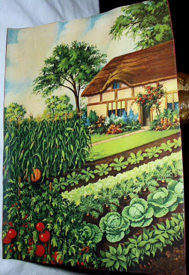 Unusual COTTAGE THEME Lithograph with GARDEN-Beautiful Tomatoes,Cabbage,Pumpkin