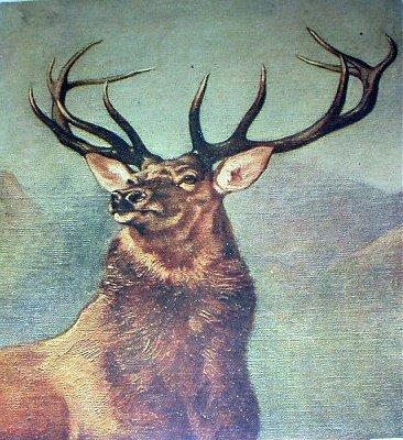 LANDSEER-MONARCH OF THE GLEN-Vintage Lithograph Print-Large Majestic Buck