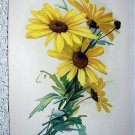 C.Klein Lovely Group Yellow Daisies Floral Print-Excellent Condition
