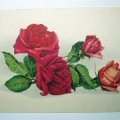 1900s USED Antique Postcard-Grouping Red and Pink Roses