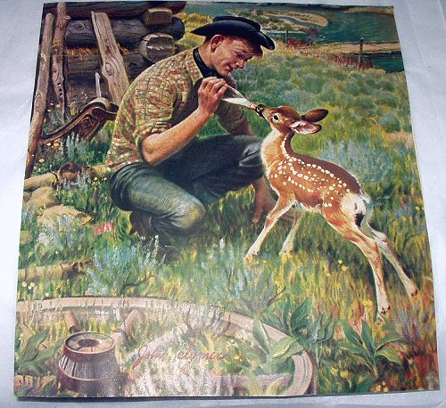 Hungry young Doe being feed milk-Vintage Magazine Artwork Print