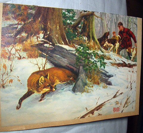 Fox Hunting Lithograph - RALPH CROSBY SMITH-Hunter, Rifle,Hunting Dogs