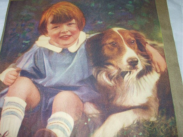 Playmates-Sweet Little Boy with Border Collie Dog-Art Illustration