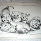 1983-Pollyanna Pickering Ilustration-Five Adorable Playful Sweet Kittens