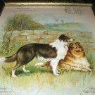 1897 Antique Chromolithograph-Collie Dogs Calendar