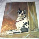 Black,White Great Dane Dog-Diana Thorne-Vintage Lithograph-Backside is Collie Dog