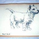 Adorable Terrier Dog-Vintage Lithograph Print