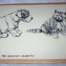Otterhound Puppy,Young Kitten Greeting-Vintage Lithograph Print