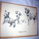 Cairn Terrier,Sealy Terrier,and Airedale Dogs-Vintage Lithograph Print