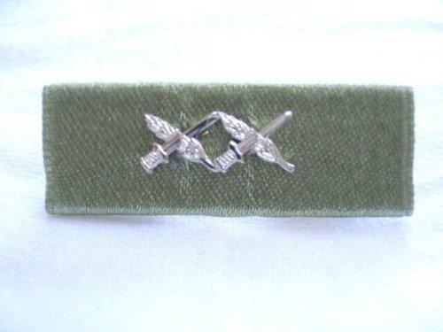 Israel Israeli army IDF GENERAL CITATION ribbon medal