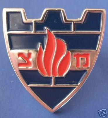 Israel Israeli army military police pin / badge IDF