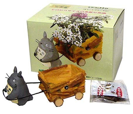 Mini Planter Pot & Seed & Soil Set - Sweet Alyssum - Totoro - 2013 (new)
