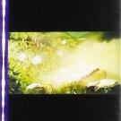 1 left - Movie Film #6 - 6 Frames - Battle Field - Mononoke - Ghibli (real film)