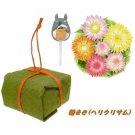 Mini Planter Pot & Pick & Seed Helichrysum & Soil - Totoro - Ghibli 2013 no production