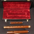 IRISH D FLUTE Rosewood NEW Cork Joint FREE Case & Ship