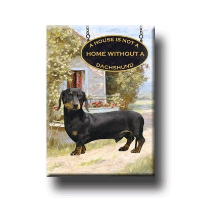 DACHSHUND House Is Not A Home FRIDGE MAGNET No 2 DOXIE