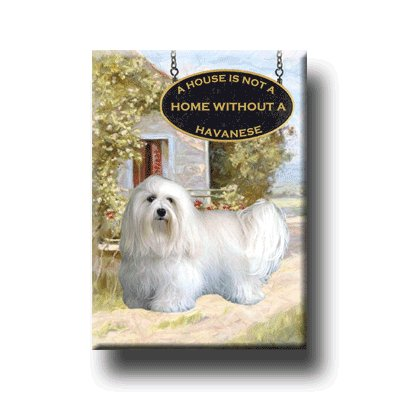 HAVANESE A House Is Not A Home FRIDGE MAGNET