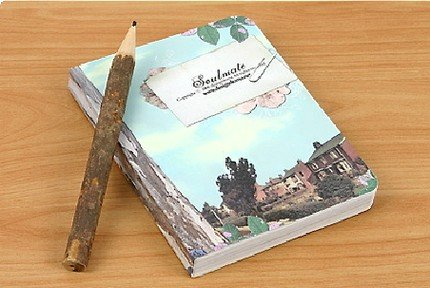 Very Quaint Retro Style Doma Soulmate Any Year Planner Diary