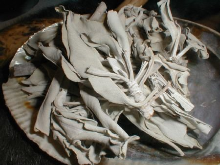 *WHITE SAGE* 2OZ Incense Smudging Purification Ceremony *EARTHSONG*
