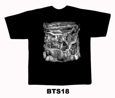 Black colour T-Shirt with Fabric printing Design