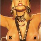 Leather Harness - Item B37
