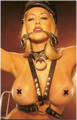Leather Harness - Item B37