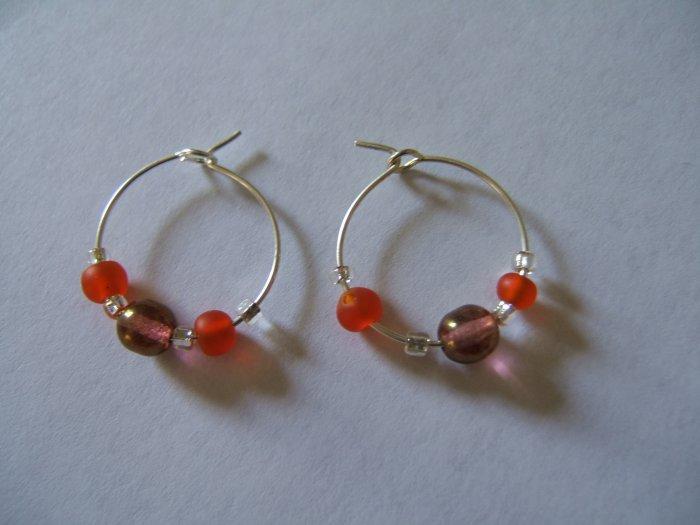 Brown and Orange Earrings