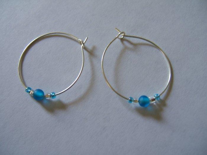 Simple Blue Earrings