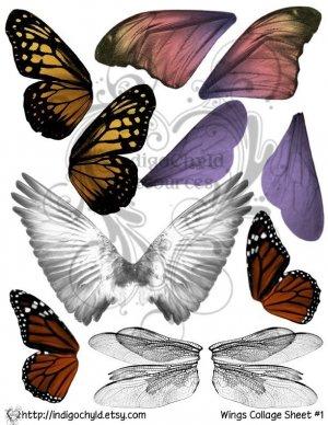 Wings Digital Collage Sheet