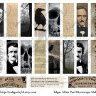 Edgar Allan Poe Microslide Collage sheets