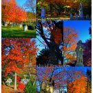High Dynamic Range Cemetery Digital Collage Sheet JPG
