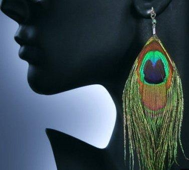Genuine Peacock Feather Earrings