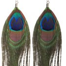 Genuine Peacock Feather Earrings