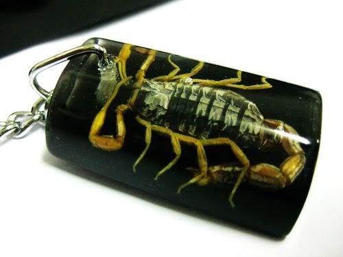 Black Amber Scorpion Keyring Keychain