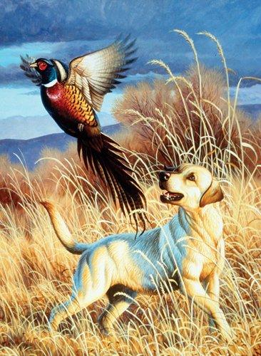 Dog & Pheasant - 500 Large Piece SunsOut puzzle - for Ages 12+