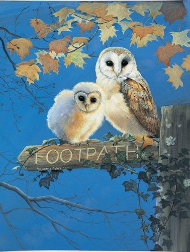 Footpath - 500 piece SunsOut puzzle - for Ages 12+