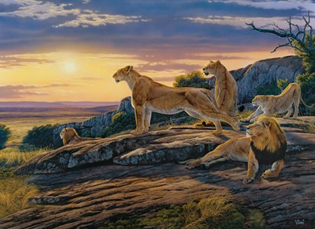 Lion's Pride - 1000 piece MasterPieces Puzzle - for Ages 12+