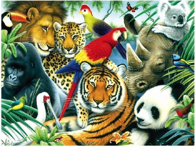 Animal Kingdom - 300 piece SunsOut puzzle - for Ages 8+