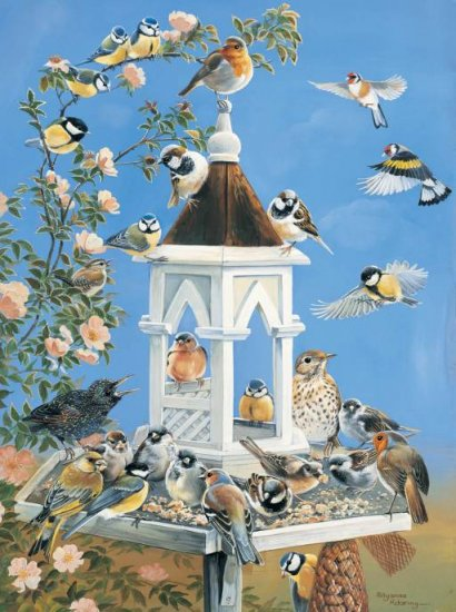 Bird Feed - 1,000 piece SunsOut puzzle - for Ages 12+