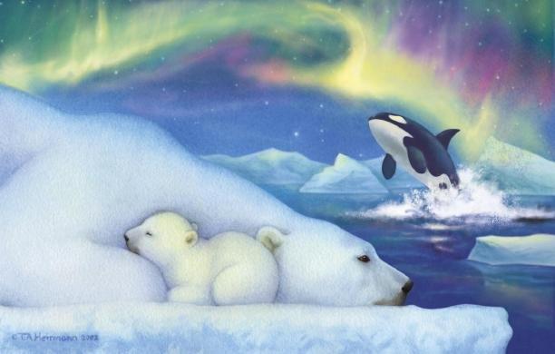 Рисунки открытки, картинки белые медведи северное сияние мультяшные