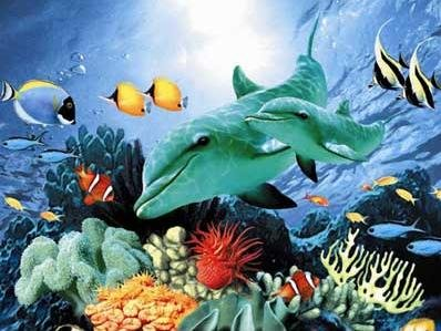 Dolphin Duo - 60 piece Ravensburger puzzle - for Ages 4+