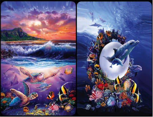 Sea Friends -  Bridge Playing Cards Double Deck - NEW