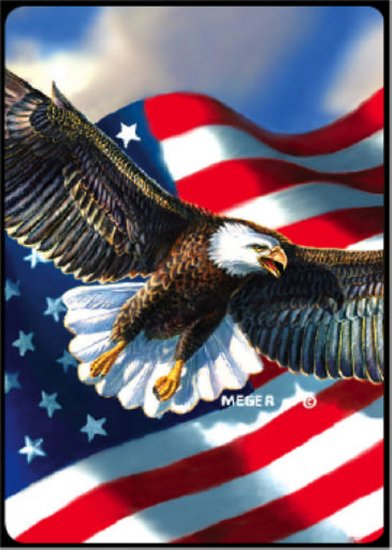 Patriotic Eagle - Bridge Playing Cards - NEW