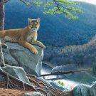 Mountain Lion Tracks - 500 piece SunsOut puzzle - for Ages 12+